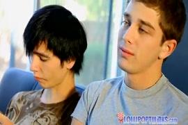 Baixar video porno gay peludo em 3gp